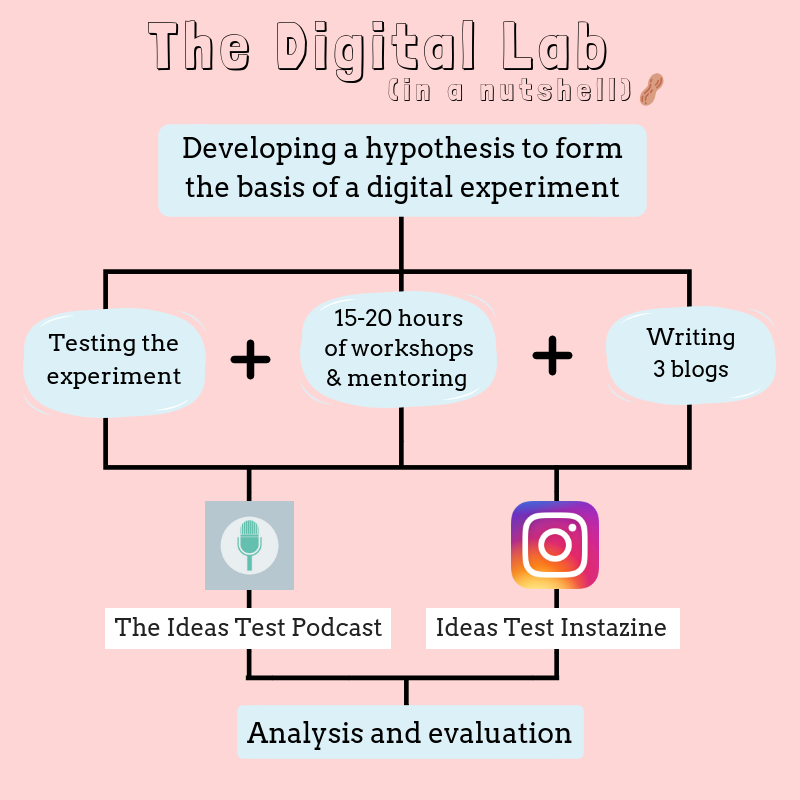 A flowchart explaining the process behind the Digital Lab